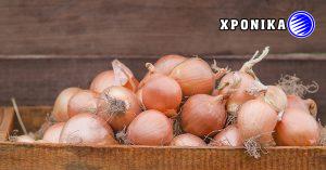 ΑΝΑΚΛΗΣΗ ωμών κρεμμυδιών στο Κεμπέκ που ενδέχεται να είναι μολυσμένα με βακτήρια σαλμονέλας